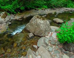 sommarvattenväg - hackleman Creek - kaskadområde - nära gravstens toppmöte - eller foto
