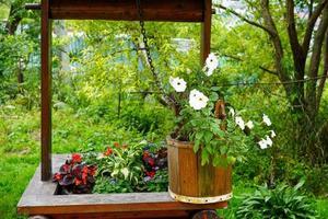 lantligt landskap med blommor i en trähink foto