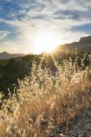 torrt gräs i bakgrunden av bergslandskapet och solen. foto