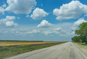 landskap med utsikt över vägen foto