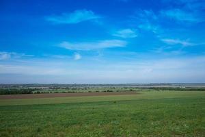 grönt fält och blå himmel foto