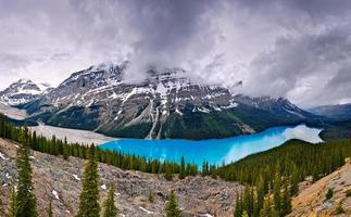 peyto lake i banff nationalpark alberta canada foto