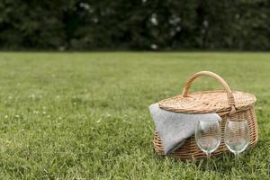 picknick korg på gräs på park foto