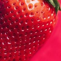 makro jordgubbe konsistens foto