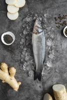 fisk som ligger på is foto