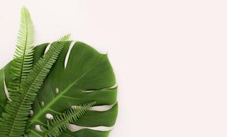 ovanifrån av monstera blad och ormbunkar med kopia utrymme. vackert fotokoncept med hög kvalitet och upplösning foto