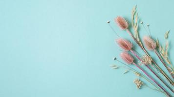 torkade blommor på blå bakgrund foto