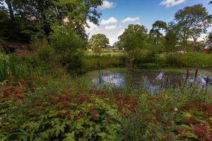 Vattendamm med frodig vegetation vid Heaton Park, Manchester foto