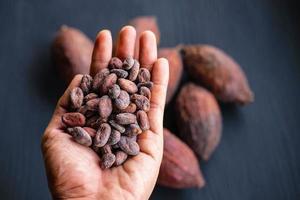kakaobönor och torkad kakao foto