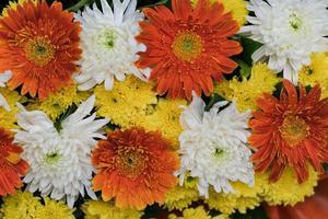 blandad bröllopsblomma mångfärgad blommig bakgrund foto