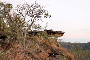 Pha Taem National Park i Ubonratchathani, Thailand foto