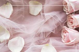 rosa rosor som en gräns foto