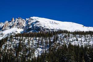 snöiga toppar och tallar med blå himmel foto