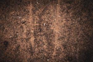 trä sågspån bakgrund närbild foto