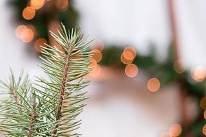 närbild av julgran med ljus i bakgrunden foto