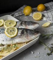 rå fiskkomposition för matlagning foto