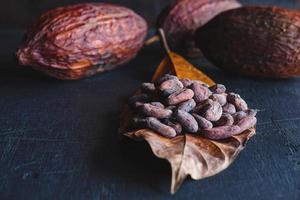 torkade kakaobönor och torkad kakao foto