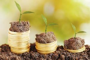 trädtillväxt upp och staplade på mynt med jordkoncept i spara pengar på affärsfinansieringsekonomi och kontobank foto