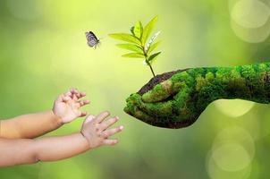 jorddag i händerna på träd foto
