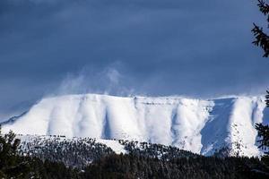 portula täckt av snö på vintern på Asiago-platån, vicenza, Veneto, Italien foto