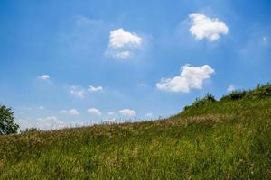 grön äng och blå himmel foto