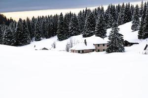 övergiven och snötäckt hus på vintern foto