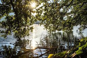 träd reflekteras på sjön levico foto