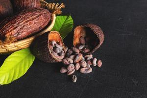 torkad kakao och kakaobönor foto