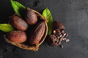 ovanifrån torkad kakao och kakaobönor foto