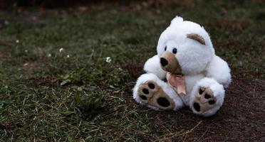förlorad övergiven mjuk plysch nallebjörn foto