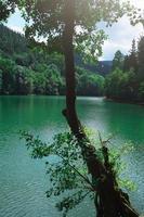 sjö i berget foto