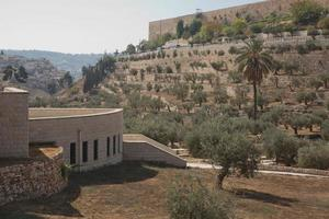 terrasser i Kidron-dalen och muren i den gamla staden i Jerusalem i Israel foto