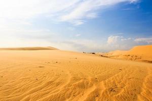 vinka på öknen vid Mui ne South Vietnam foto