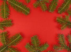 jul platt låg med gran träd grenar på en röd bakgrund och kopiera utrymme inuti stock foto