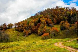 alla nyanser av hösten foto