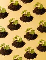 repetitivt och minimalistiskt mönster av en växande växt foto
