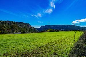grönblått och berg foto