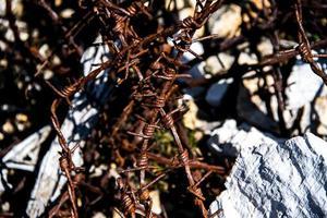 taggtråd med trä foto