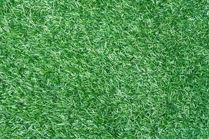 en gräsbakgrund foto
