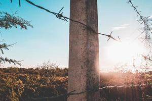 stängsel av galvaniserad taggtråd foto