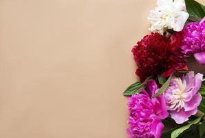 pion blommor som en gräns foto