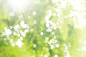 abstrakt suddig ljus bokeh natur bakgrund av gröna blad foto