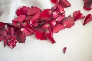 bröllopsbakgrund med röda rosor foto