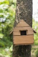 fågelhus i träd foto