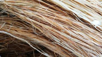 grupp av hamprep fiber textur mönster bakgrund foto