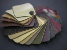 fläktkatalog med färgade läderprover foto