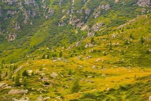 autonoma provinsen Trento foto