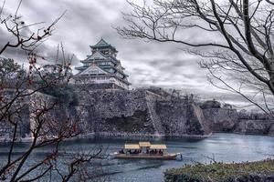 Osaka slott sett från parken foto