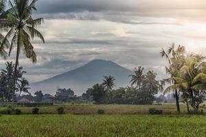 vackert landskap i bali foto