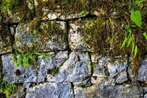 vägg och stenar foto
